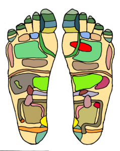 voetrefelx